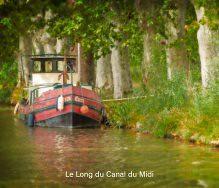 Le Long du Canal du Midi