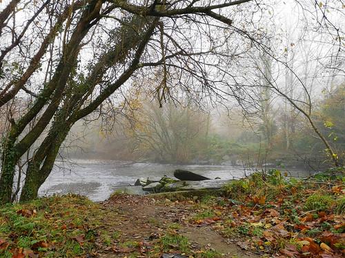 Misty river: version 2
