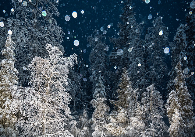 Snowing by night