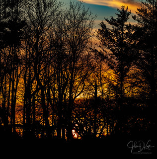 The sunset/sunrise glowing behind the trees is one of my favorite views in nature... Lakewood forest preserve.