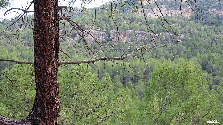 Montañas en las Hoces del Cabriel