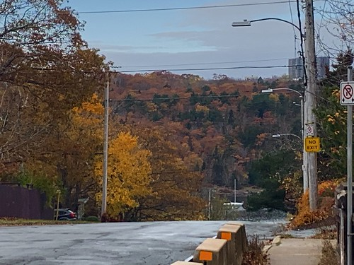 Fall Colour over Halifax Northwest Arm