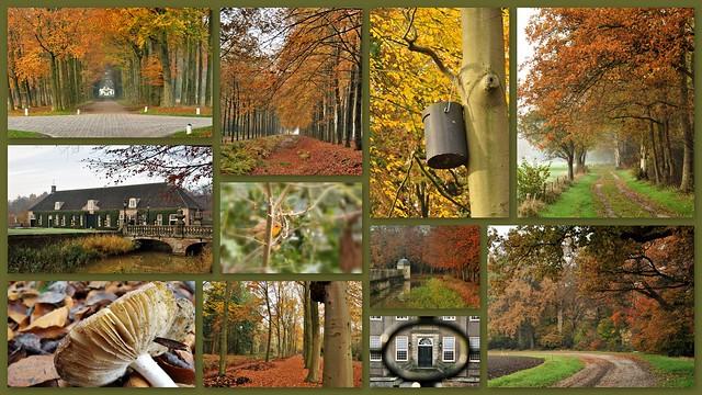The last photos (photowalk Overijssel series)