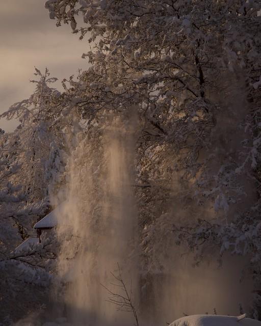 Avalanche Tree
