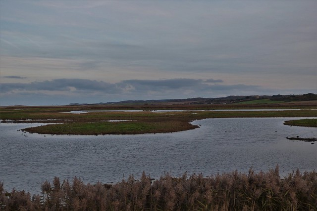 On the east bank Cley.