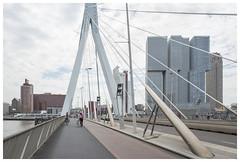 Erasumusbrug / Nieuwe Maas