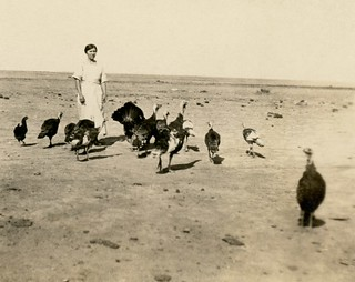 Just Part of the Flock, 1921
