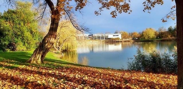 L'automne en novembre -3-