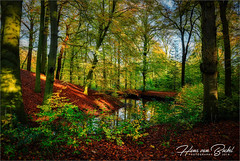 Park Havezate Den Alerdinck