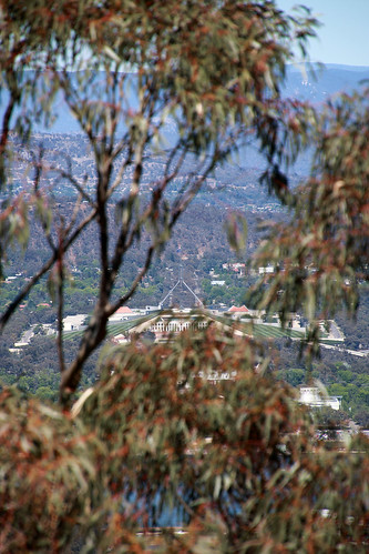 parliamenthouse act canberra australia eucalypt mtainslie view