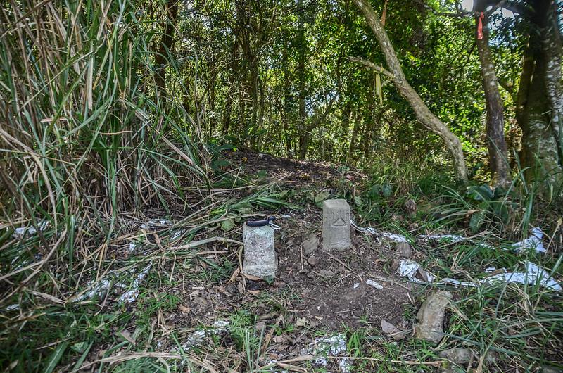 西良母嵐山3-7190 三等三角點及補近(28)森林三角點(Elev. 1688 m)