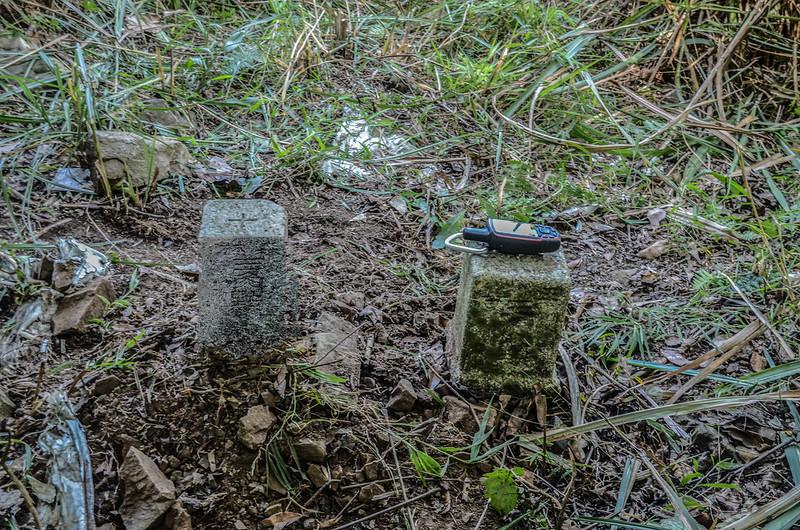 西良母嵐山3-7190 三等三角點及補近(29)森林三角點(Elev. 1688 m)