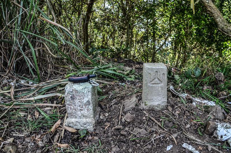 西良母嵐山3-7190 三等三角點及補近(28)森林三角點(Elev. 1688 m) 1