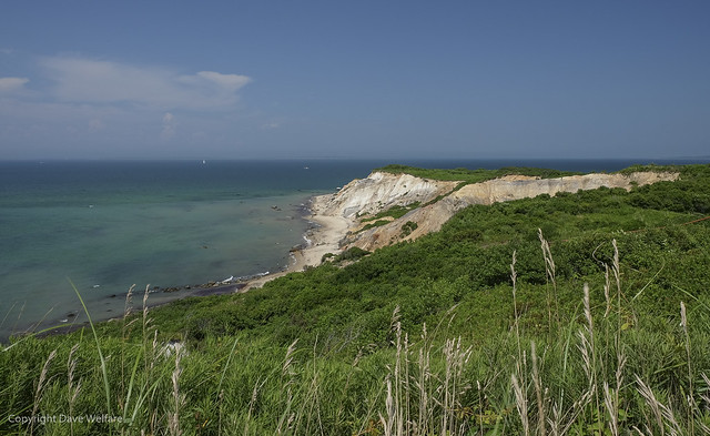 Cape Cod 7 - Martha's Vineyard