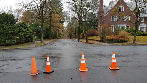 Four cones