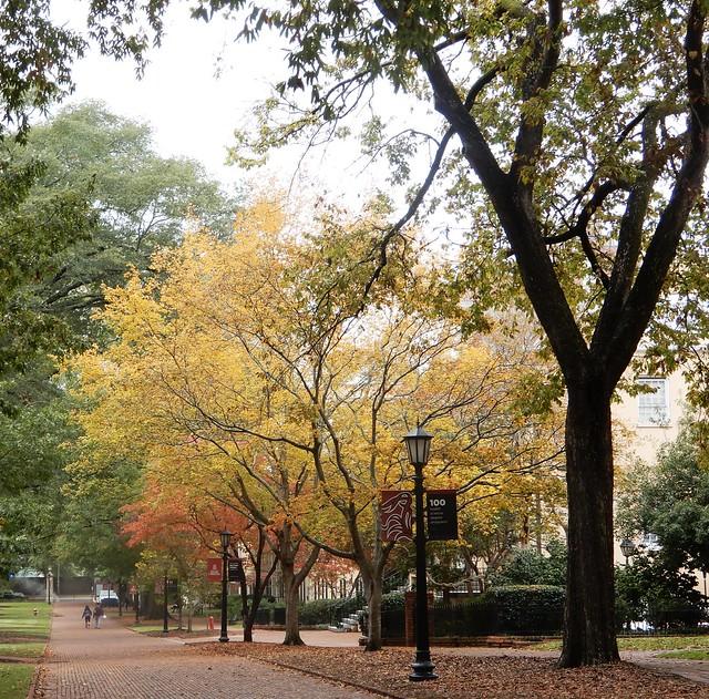 Autumn USC