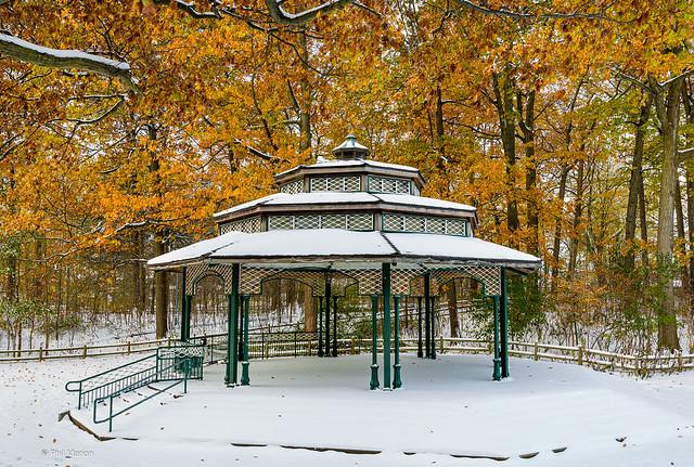 Winter arrives before autumn leaves - Christie Bandshell, Kew Gardens
