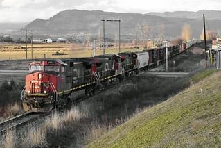 CN 2555(8)