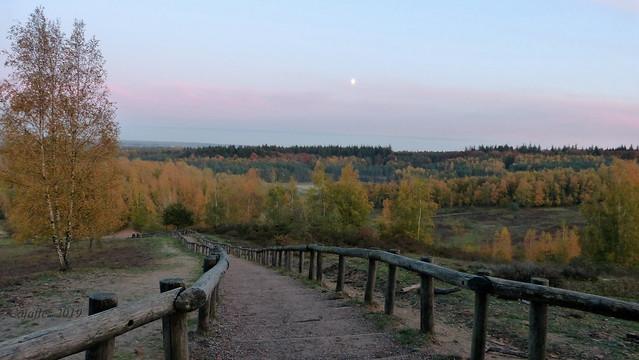 View on Kwintelooijen , allmost sunset. November 8th.