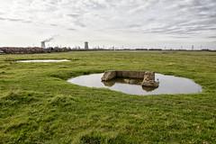 Hedon Aerodrome fields vista view