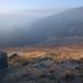 Morning mist at Edgewood