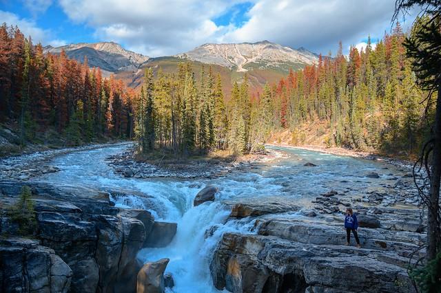 Sunwapta Falls - Jasper - Canadá