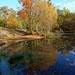 "<p><a href=""https://www.flickr.com/people/78950271@N03/"">hbensliman.free.fr</a> posted a photo:</p>  <p><a href=""https://www.flickr.com/photos/78950271@N03/49099146342/"" title=""Mare de Franchard""><img src=""https://live.staticflickr.com/65535/49099146342_0c9ed0a6ca_m.jpg"" width=""160"" height=""240"" alt=""Mare de Franchard"" /></a></p>  <p>Fontainebleau forest landscape       <br />                  <a href=""http://hbensliman.free.fr/Fontainebleau/index.html"" rel=""noreferrer nofollow"">Website</a>  <a href=""https://www.picfair.com/users/HassanBensliman/albums/20615-fontainebleau-forest-impressions"" rel=""noreferrer nofollow""> / Print </a>  / <a href=""https://hbensliman.myportfolio.com/fontainebleau-forest"" rel=""noreferrer nofollow"">Buy</a></p>"