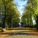 Autumn at Haslam Park in Preston