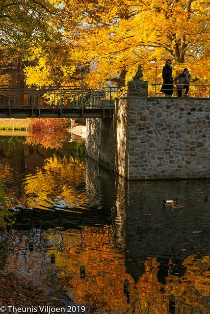 Autumn colours in Cottbus - XIV