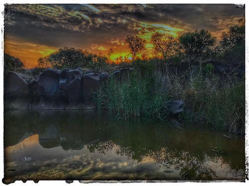 africa sunset waterscape bush bushveld safari gamereserve nature naturereserve cluds treees