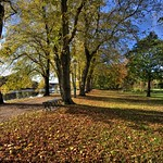 Autumn sunlight at Avenham Park, Preston