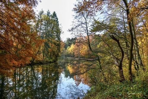 autumn reflection nature nikon d850 germany deutschland colorful landscape