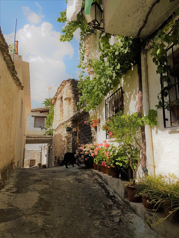 3.1 Alpujarras typical house1