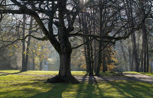 Schlosspark Ambras - Innsbruck