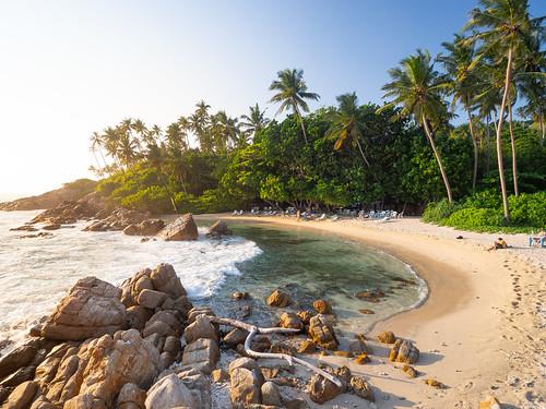 srilanka travel asia southeastasia olympus omd omdem10 em10 traveling worldtravel backpacking beach landscape ocean secret mirissa 918mm 918 palmtrees sunset m43
