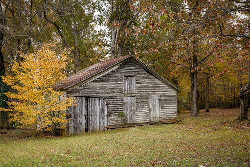 canon 6d 1740mml lens greenvillesc upstate south carolina barns rural country roads building shed vintage vanishing dissappearing scenic landscape america usa past aged serene classic november autumn fall foliage maple color yellow leaves wood tin roof