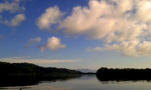 Primero lo primero: ¡No a la piñería en el humedal nacional Térraba-Sierpe! First things first: No to environment-harming pineapple growing in the Térraba-Sierpe national wetland!