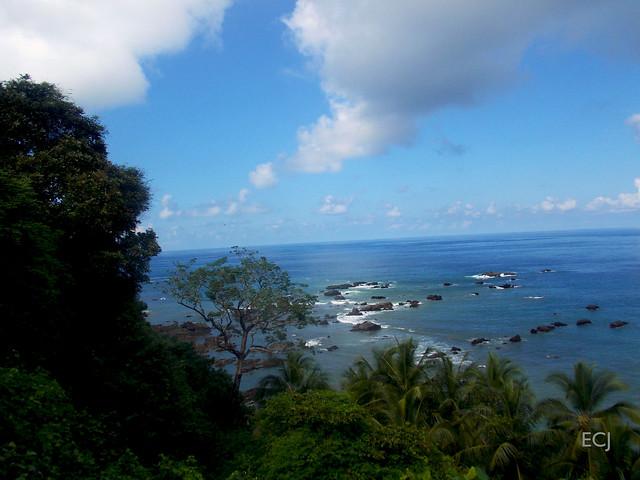 Paisaje desde Isla del Caño/ Landscape from Caño island