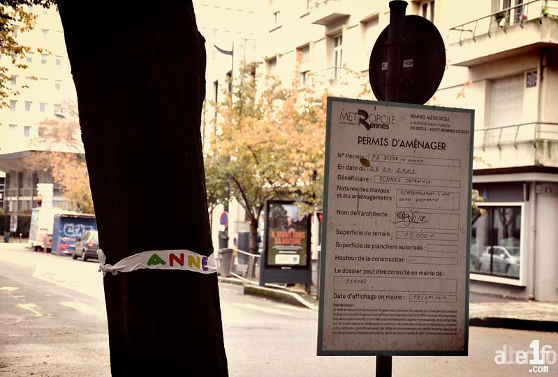 « Adopte un arbre »... de l'avenue Janvier