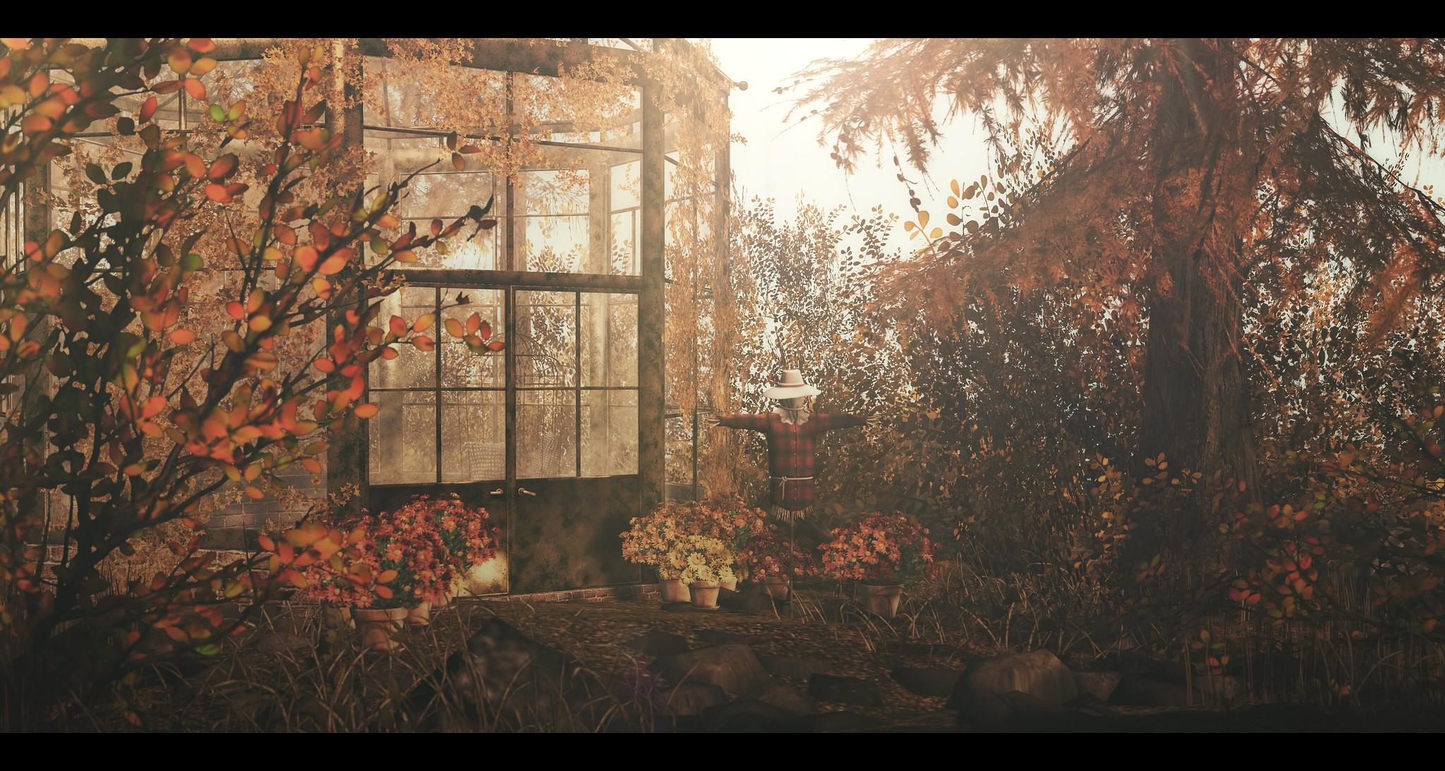 November Flowers.