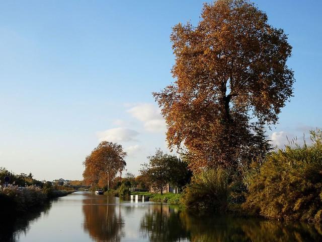 Les Ors du Canal du Midi......