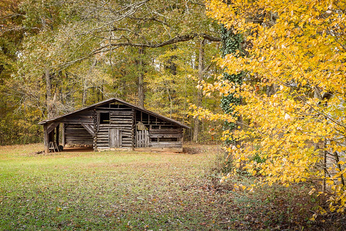 canon 6d 1740mml lens greenvillesc upstate southcarolinarural country roads barns building shed farm old log vintage southern scenic landscape america usa southeast abandoned past aged outdoor serence classic fading bygone era rfd wood tree november fall autumn foliage color