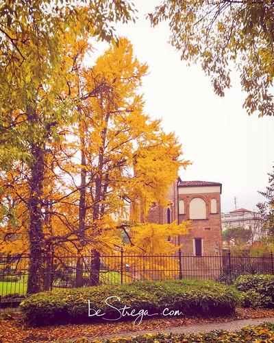 L'autunno inizia a colorare il giardino della Cappella degli Scrovegni