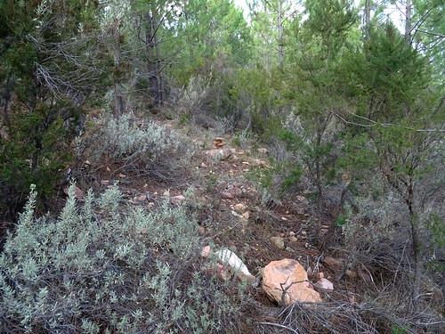 Reconnaissance dans la descente : un cairn pour repérer le vrai chemin cadastré de Luviu