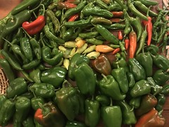 pepper harvest IMG_2504