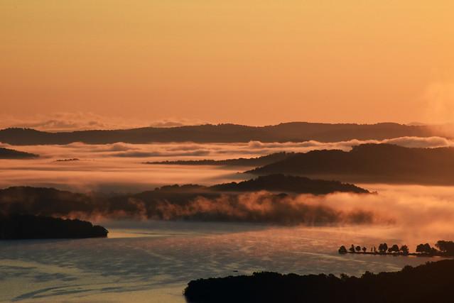 Misty Morning - Beaver Lake