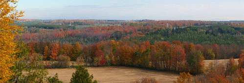 panorama fallleaves autumncolours brucetrail splitrocksidetrail monotownship dufferincounty ontario canada