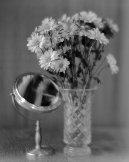 Daisies, Vase, Mirror