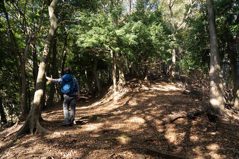 鐘ヶ嶽の登山道