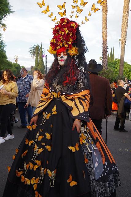 Sacred Migrations - Monarch